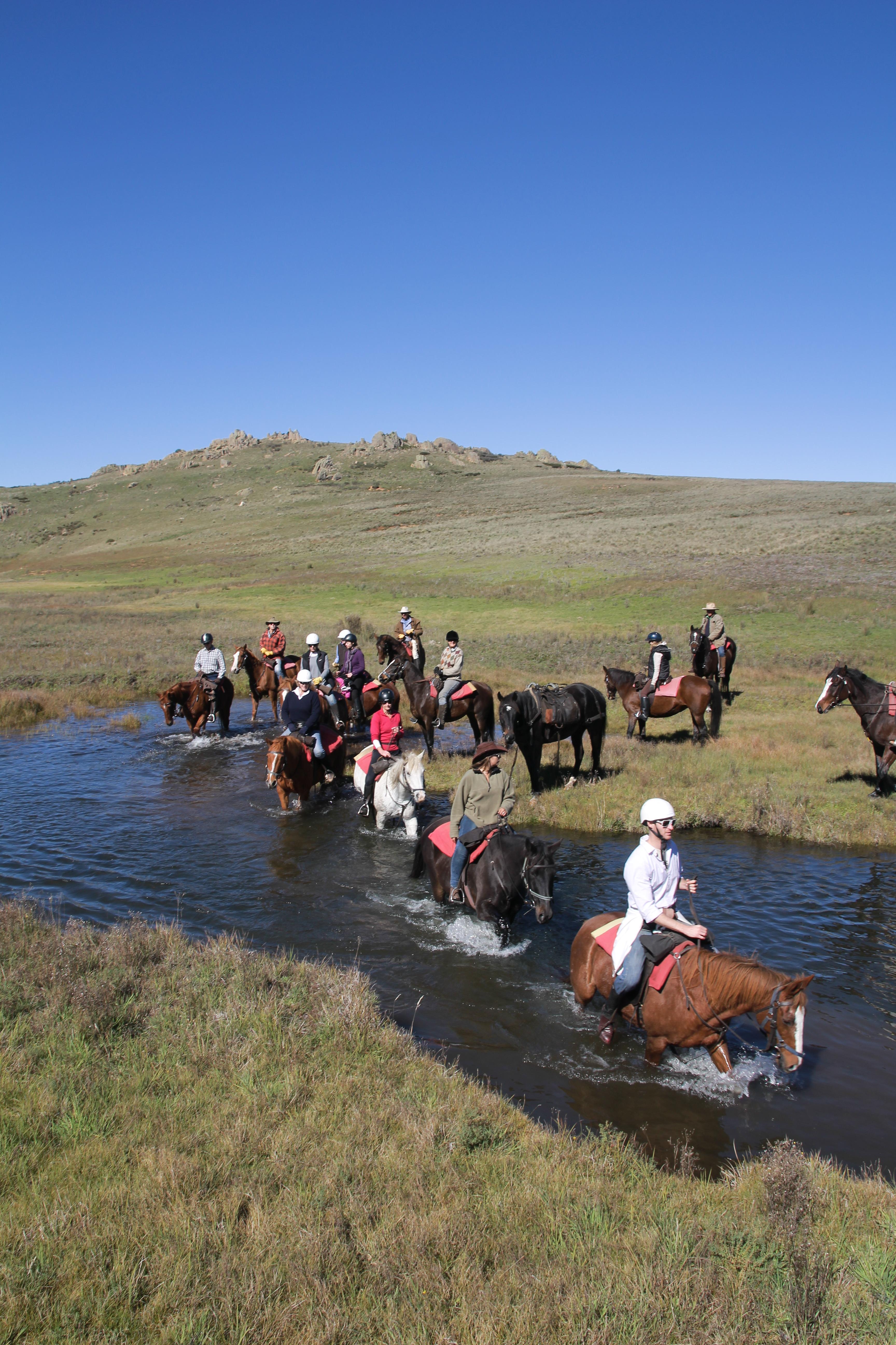 Reynella Rides Horseback Safaris Reynella Rides